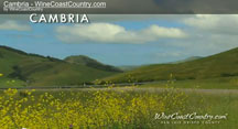 wine coast country cambria video